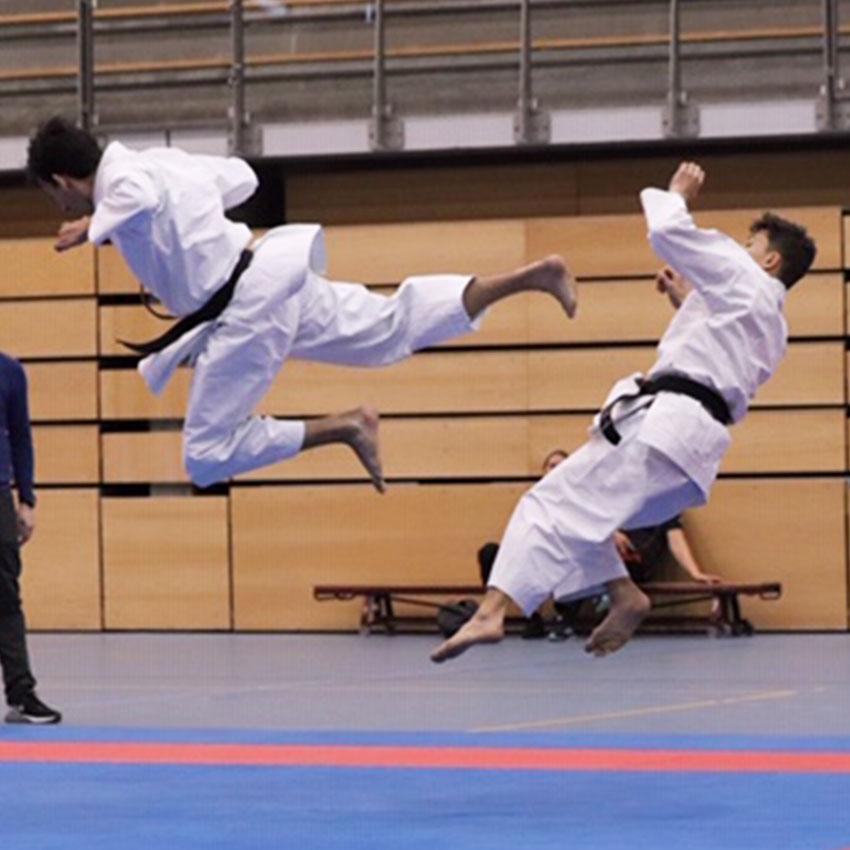 Karate: Sport of Kunst