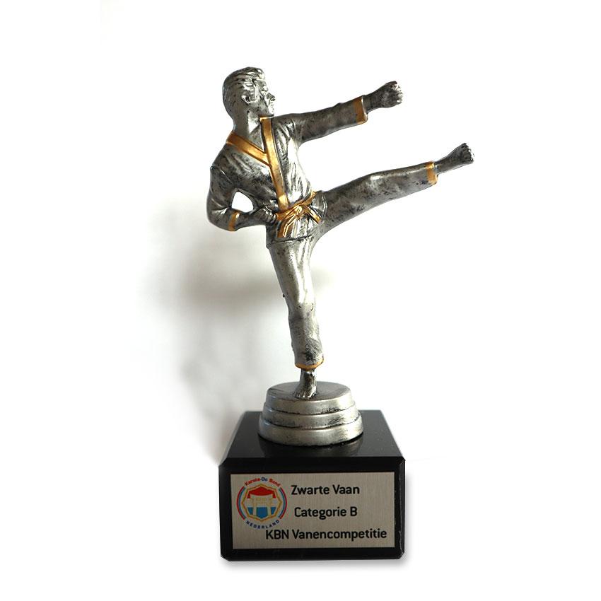Karate geschikt voor iedereen!